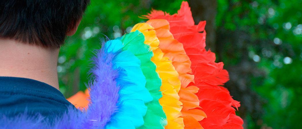 Pride nuorella miehellä siivet sateenkaariväreissä kuvaaja Eija Harju